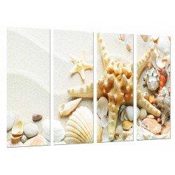Cuadro Moderno Fotografico base madera, Arena Sedimentos, Estrella Mar, Conchas Caracolas, Bano