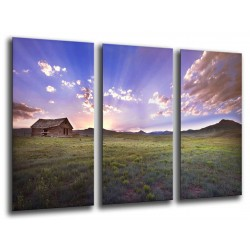 MULTI Wood Printings, Picture Wall Hanging, Sunset in meadow of cultivo