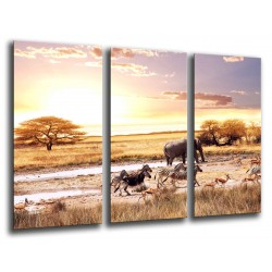 MULTI Wood Printings, Picture Wall Hanging, Sunset in the Desert, Animals Wilds