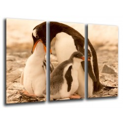 MULTI Wood Printings, Picture Wall Hanging, Penguins in the Beach, Nature