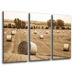 MULTI Wood Printings, Picture Wall Hanging, Landscape Farming Rural
