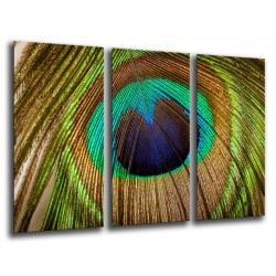 MULTI Wood Printings, Picture Wall Hanging, Feathers Peacock
