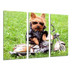 MULTI Wood Printings, Picture Wall Hanging, Dog With Moto, Infantil