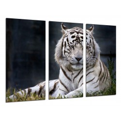 MULTI Wood Printings, Picture Wall Hanging, Tiger White, Animales
